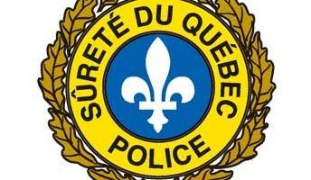 50 chiens trouvés par la SQ à Saint-Gabriel-de-Brandon