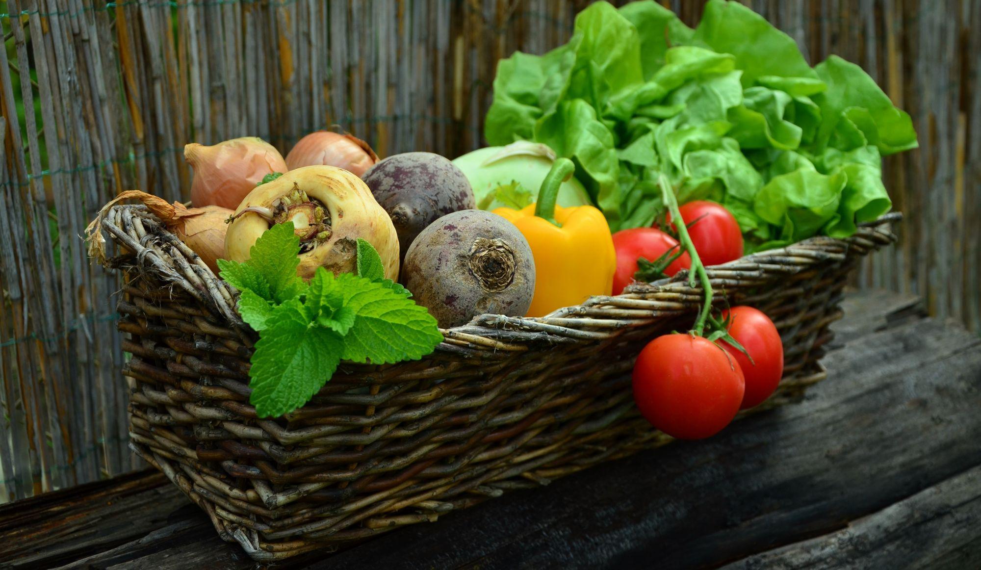Manger bio, concrètement, pourquoi c'est mieux?