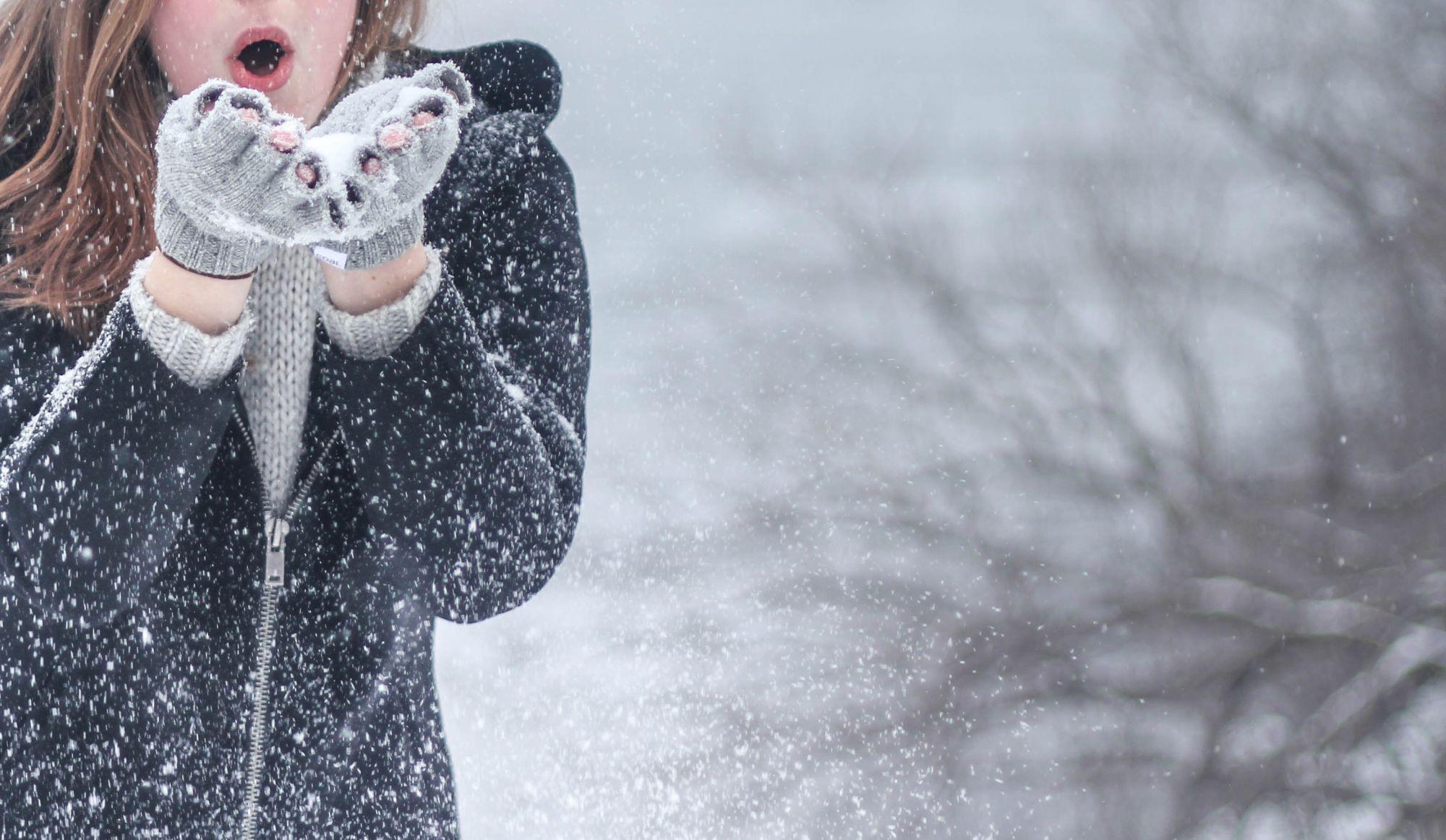 Apprivoiser l'hiver