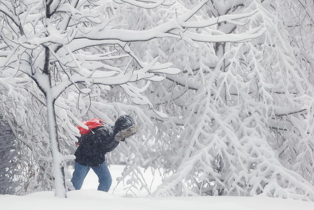 Une bonne tempête de neige dans les Prairies