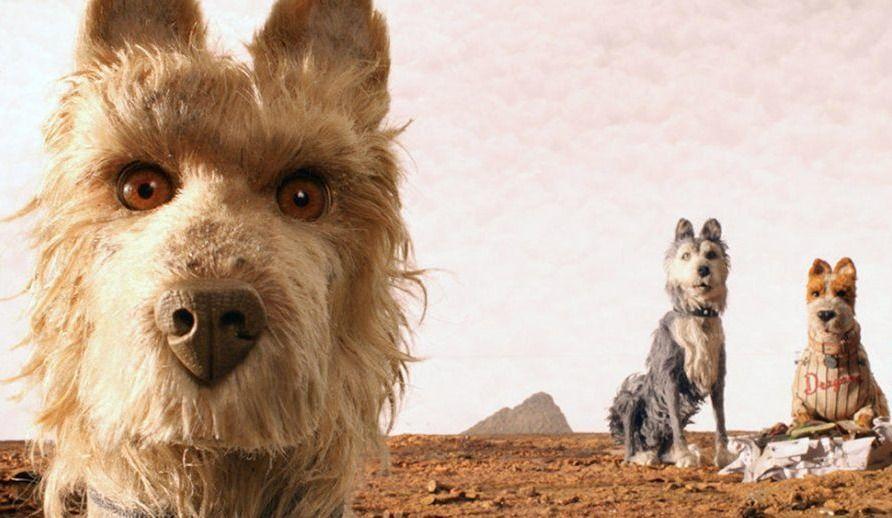 Au cinéma avec son chien!