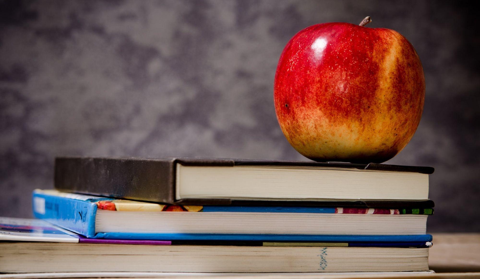 Éducation : la ministre St-Pierre soutient la formation professionnelleet la persévérance scolaire