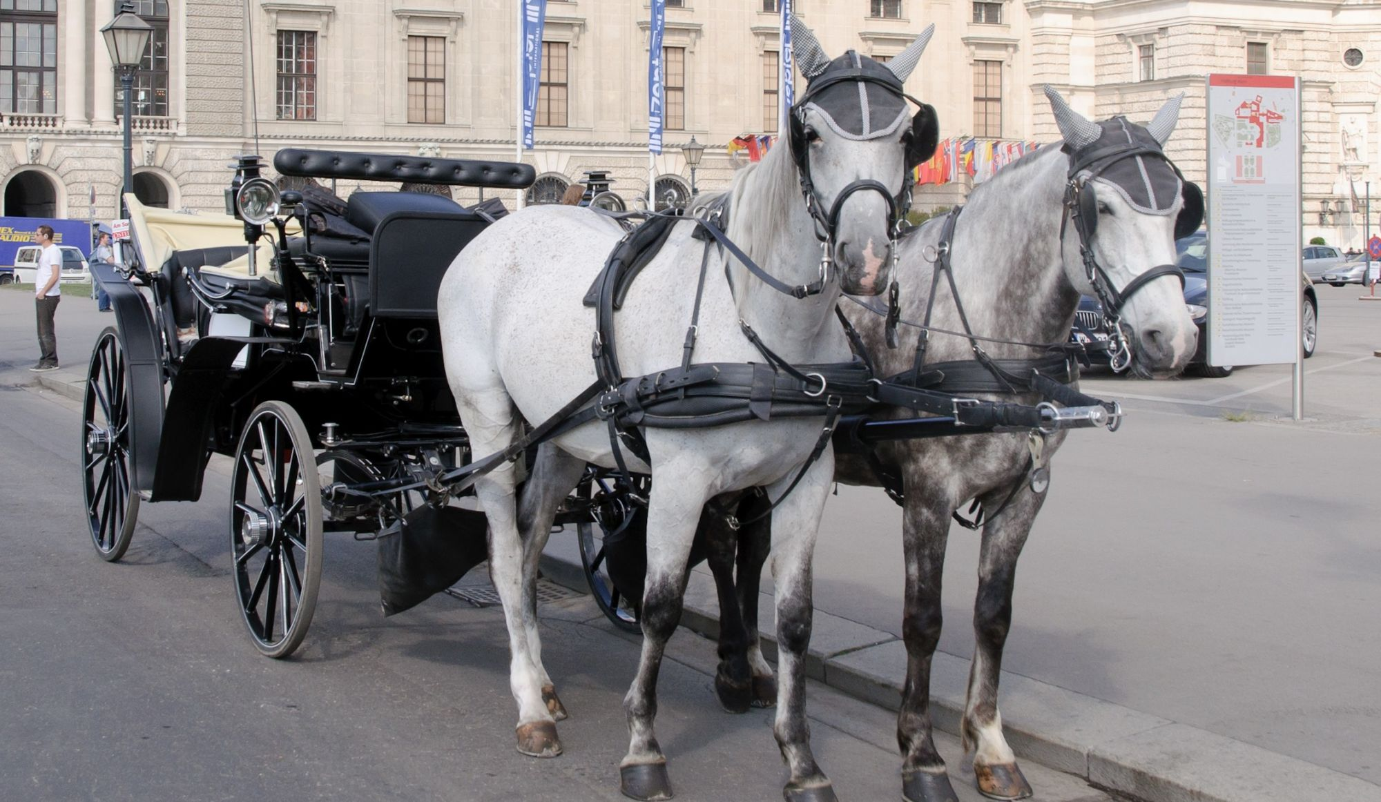 Montreal will Ban Horse-Drawn Carriages